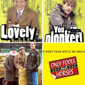 The best Only Fools and Horses Quotes